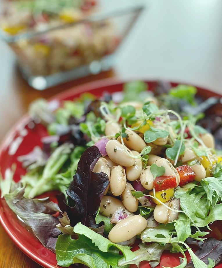 A plate of an Italian Bean Salad